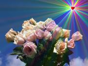 20090403023658-zz-rosas.jpg